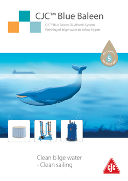 Blue Baleen brochure